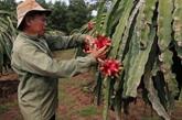 Agriculture: exportation excédentaire de 7,45 milliards de dollars