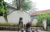 Le chien dans la culture vietnamienne