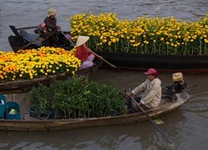 Cân Tho: séminaire international sur la vision touristique du delta du Mékong