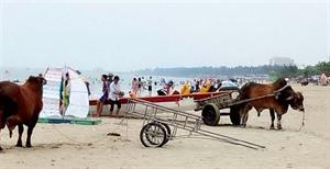 Lancement de la campagne La mer bleue du Vietnam à Nghê An