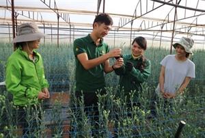 Lâm Dông crée une percée dans son agritourisme