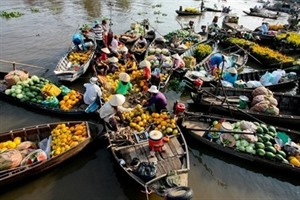 Le delta du Mékong laboure le sillon de lagrotourisme