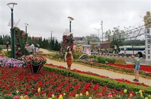 Rendez-vous au Festival des fleurs de Dà Lat en décembre