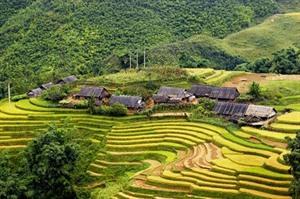 Le PM appelle à un développement durable et inclusif du tourisme à Lào Cai