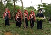 Saison des pluies, jours de balançoire chez les Hà Nhi