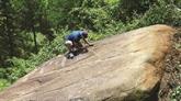 De mystérieux pétroglyphes découverts à Lao Chai
