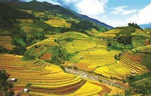 Culture et grands espaces à Yên Bái