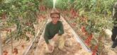 Un jeune architecte en stage de biologie végétale en Israël