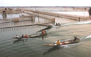 Entre terre et mer, le marais de Chuôn
