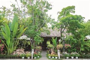 Village de Binh Quoi : une bulle de nature en plein cœur de la ville