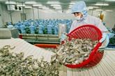 Chercher des moyens pour les entreprises du Vietnam et de la France de profiter de l'EVFTA