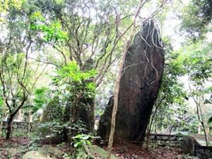 Le site historique K9 ravive la mémoire du Président Hô Chi Minh