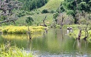 À la découverte du lac Noong U sauvage et charmant