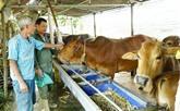 Le Vietnam œuvre pour améliorer la vie des minorités ethniques