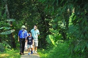 Cinq Parcs nationaux du Vietnam