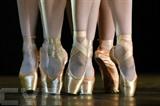 Le Centre national de la danse de Pantin propose jusqu'au 23 février une exposition sur le chorégraphe Marius Petipa, qui a servi les théâtres du Ballet impérial de Saint-Pétersbourg pendant 64 ans. Photo: AFP/VNA/CVN