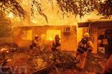 Le bilan de l'incendie forestier dans l'État américain de Californie s'alourdit à 42 morts, ce qui en fait le plus meurtrier dans l'histoire californienne, ont déclaré lundi 12 novembre les autorités locales. Photo: AFP/VNA/CVN