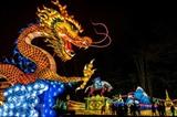 Une lanterne chinoise en forme de dragon dans le parc de Gaillac. Photo: AFP/VNA/CVN