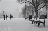 Plus de 1.000 vols ont été annulés aux États-Unis à cause d'une tempête de neige qui avait attaqué la côte Est le 20 février.<br /> <br /> Photo: Xinhua/VNA/CVN