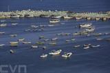 Les bateaux de pêche palestiniens au port de Gaza sur la Méditerranée, le 10 mai. Photo: AFP/VNA/CVN