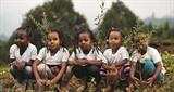 L'Éthiopie, à l'heure de l'écologie, veut planter 4 milliards d'arbres. Depuis mai, quelque trois milliards d'arbres auraient déjà été plantés, selon les autorités éthiopiennes.<br /> Photo: AFP/VNA/CVN