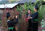 Des femmes de l'ethnie Công dans la province de Diên Biên au festival traditionnel