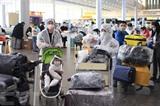 Des resortisssants vietnamiens à l'aéroport de Sheremetyevo, en Russie le 12 mai. Photo : Trân Hiêu/VNA/CVN
