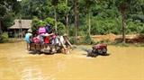 Inondations au district de Luc Yên, dans la province de Yên Bai (Nord), le 14 septembre. Photo : VNA/CVN
