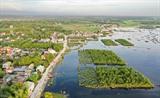 La mangrove à la commune de Quang Loi, district de Quang Diên, aux alentours de la lagune de Tam Giang, province de Thua Thiên Huê (Centre). Photo: VNA/CVN<br /> <br />