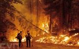 L'incendie de Dixie en Californie fait rage dans le comté de Plumas, en Californie, le 23 juillet. Photo : AFP/VNA/CVN<br /> <br />