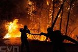 Les soldats du feu combattent un violent incendie au nord d'Athènes. Photo: AFP/VNA/CVN