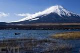 La neige recouvre le sommet du mont Fuji, au Japon. Photo : AFP/VNA/CVN